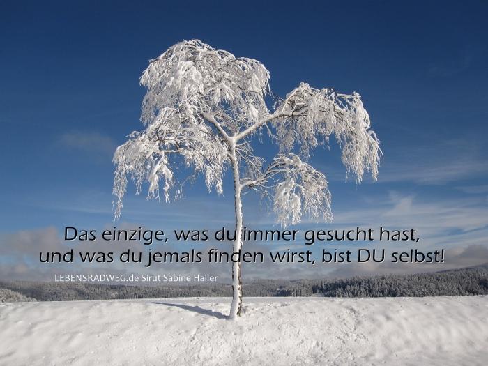 0-winter-1675197_1920