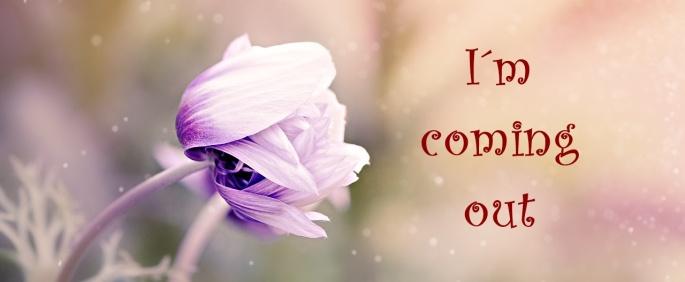 00-anemone-1533515_1280